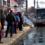 Curse anulate și autobuze mai puține, pe traseele Transurb