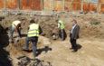 Cavoul Roman scoate capul de sub gunoaiele gălățenilor