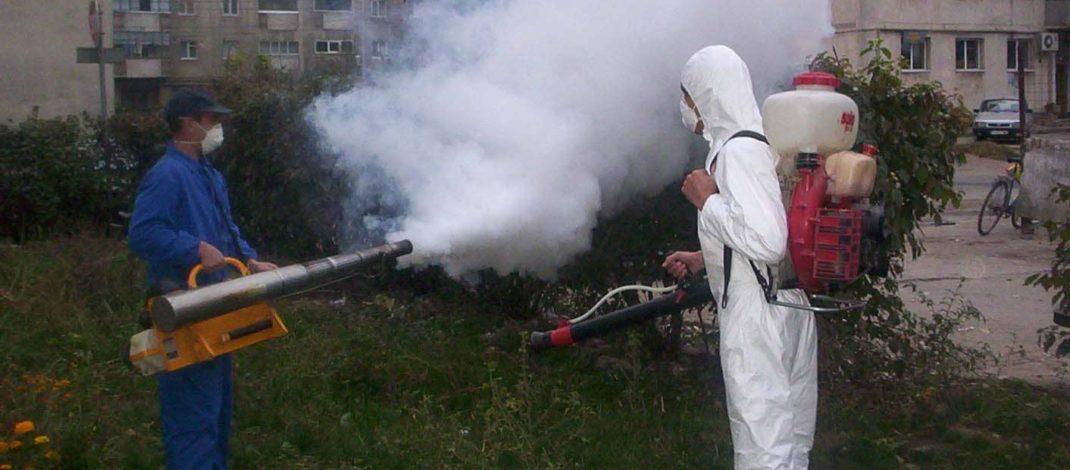 Atenție, țânțari! Primăria v-a pus gând rău