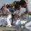 La Galați, Ziua Marinei este organizată pe mal