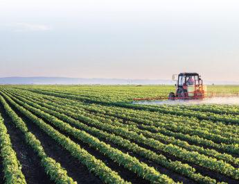 Fruntași la vânzările de terenuri agricole